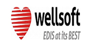 Wellsoft EDIS EHR Software